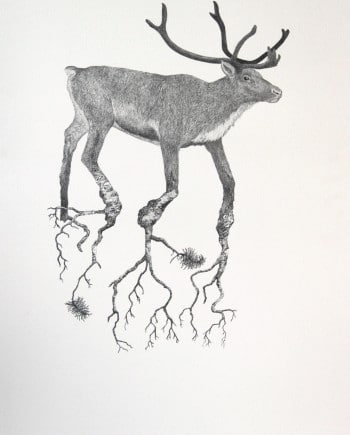 Reindeer and tree nr 6
