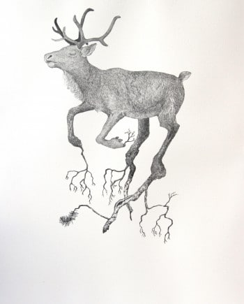 Reindeer and tree nr 7
