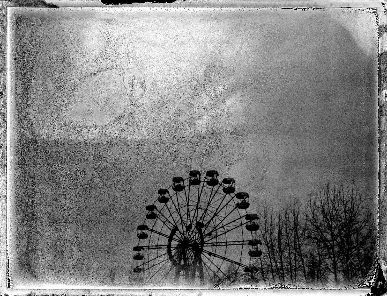 Polaroid Pictures II