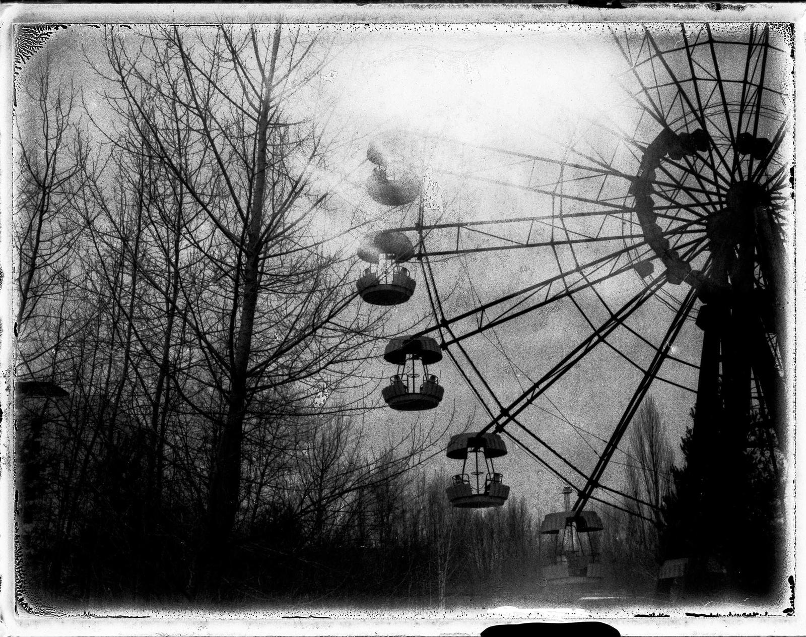 Polaroid Pictures VII