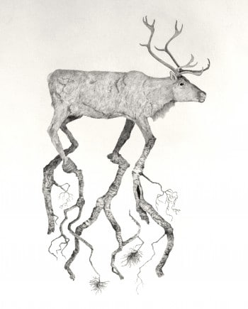 Reindeer and tree nr 4