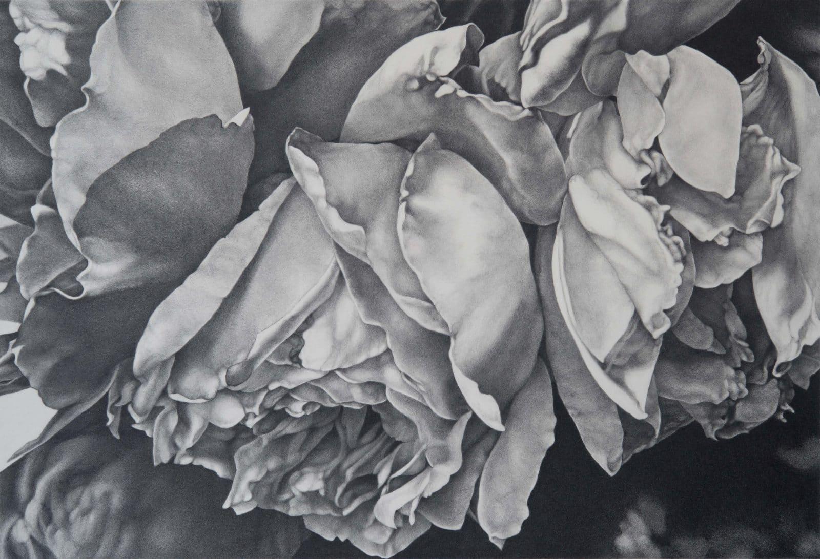 Foldings Roses II
