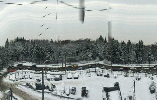 Sheremetyevo International Airport, Starbeyevo, Russia January 25, 2015, 10:34:47 AM