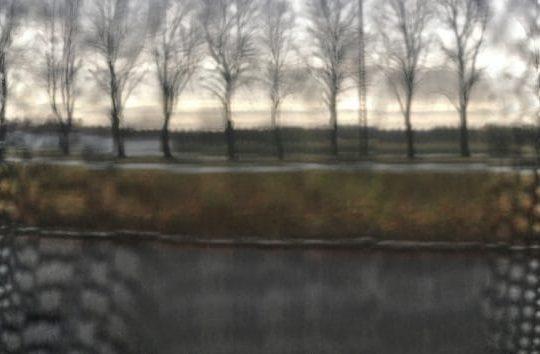 Uzvaras Parks, Riga, Latvia November 3, 2017, 9:35:36 AM