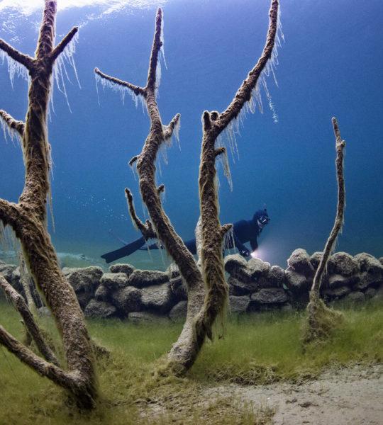 Lyngstøylsvatnet I, Waterscape #I